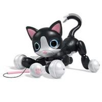 Gatita Zoomer Kitty