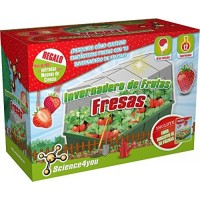 Invernadero de Fresas y Sandías